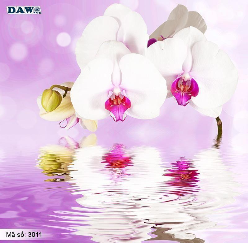 3011 Tranh dán tường Hàn Quốc | Tranh dán tường hoa lá 3011