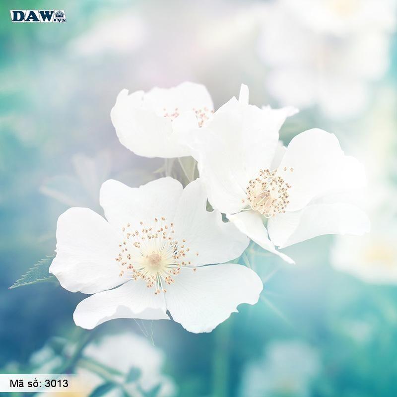 3013 Tranh dán tường Hàn Quốc | Tranh dán tường hoa lá 3013