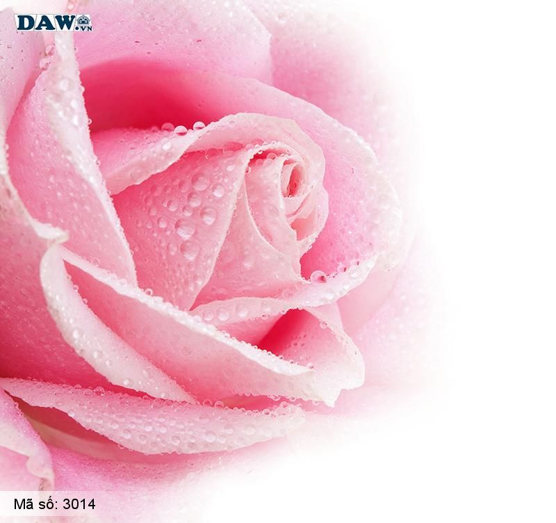 3014 Tranh dán tường Hàn Quốc | Tranh dán tường hoa lá 3014