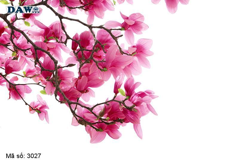 3027 Tranh dán tường Hàn Quốc   Tranh dán tường hoa lá 3027