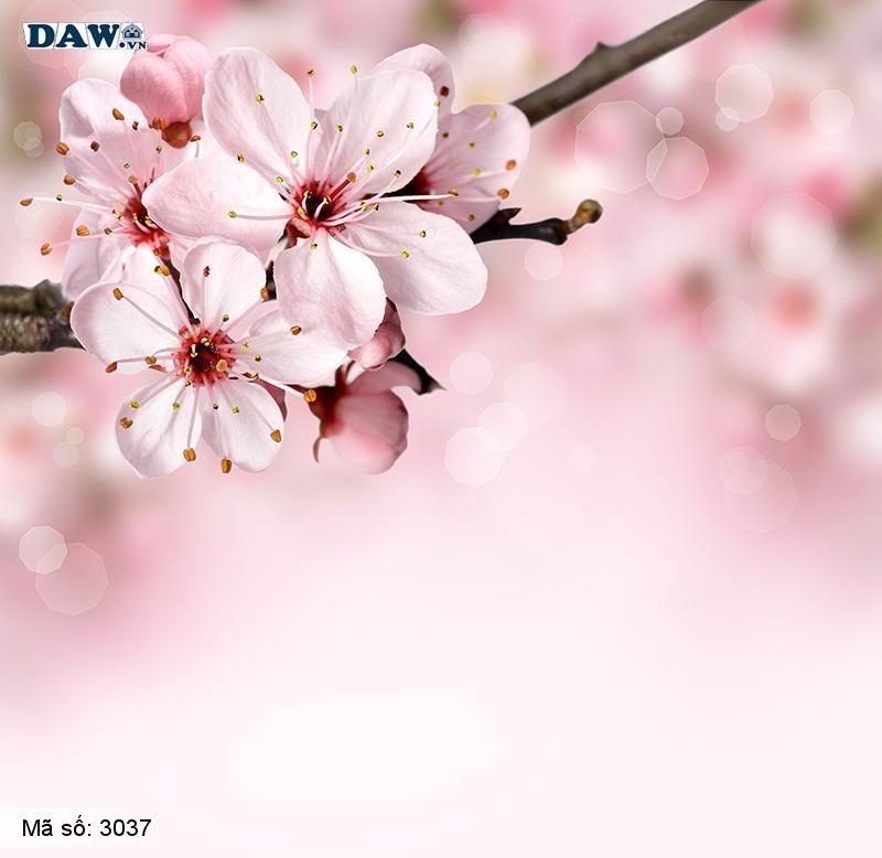 3037 Tranh dán tường Hàn Quốc | Tranh dán tường hoa lá 3037