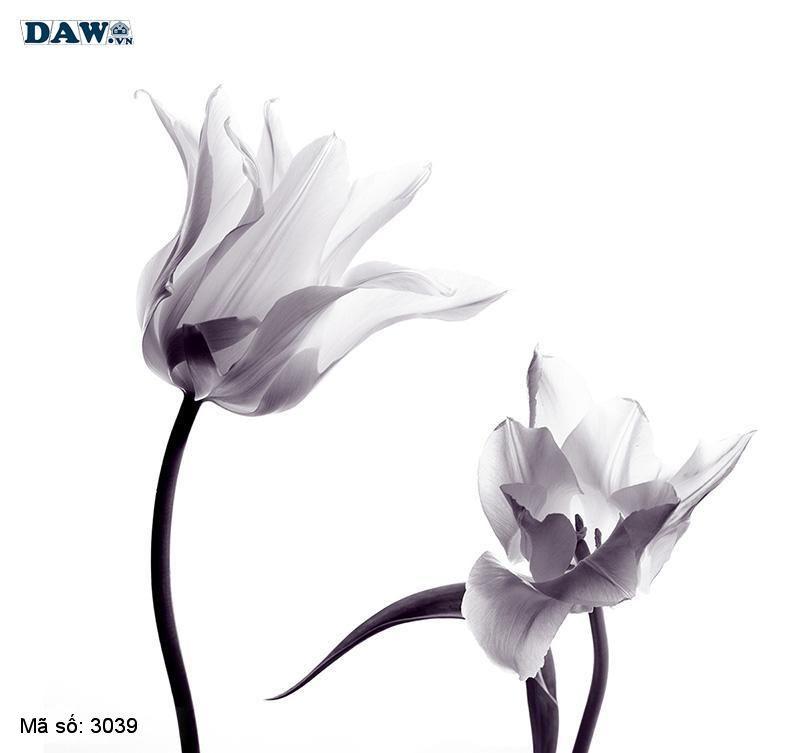 3039 Tranh dán tường Hàn Quốc | Tranh dán tường hoa lá 3039
