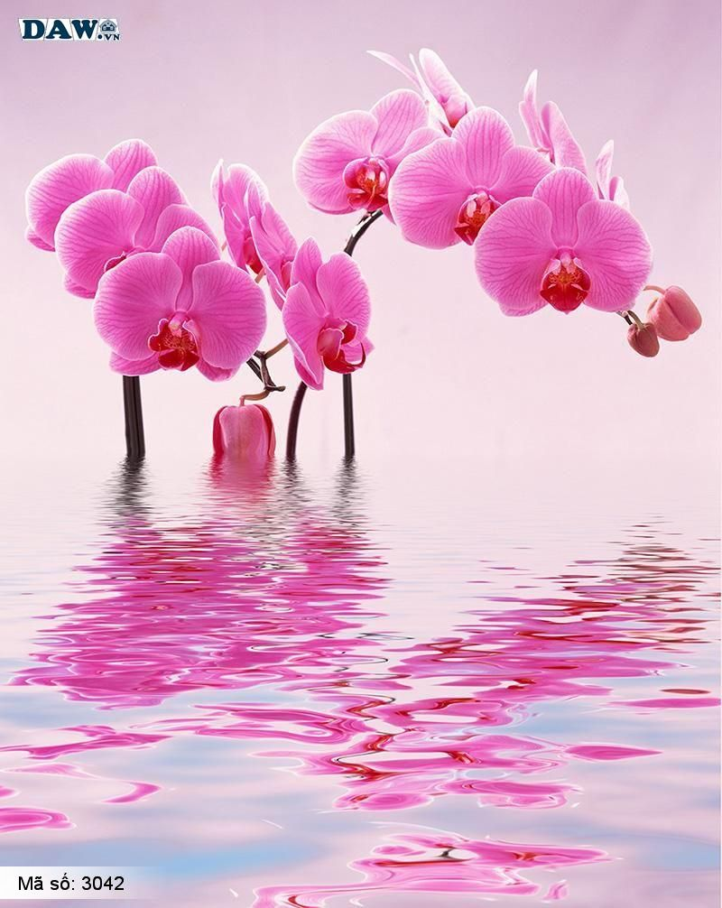 3042 Tranh dán tường Hàn Quốc | Tranh dán tường hoa lá 3042