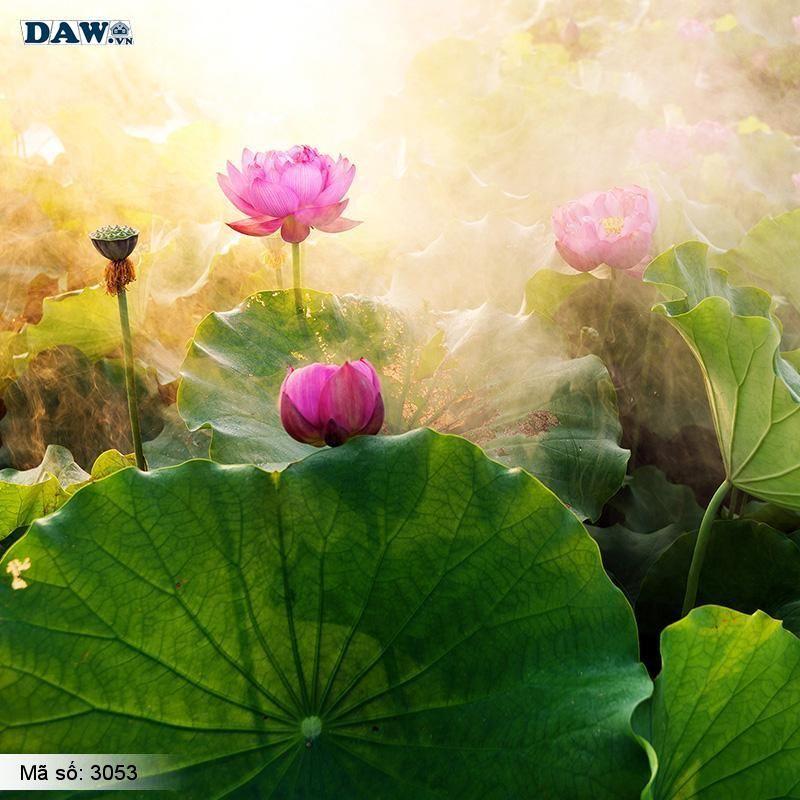 3053 Tranh dán tường Hàn Quốc | Tranh dán tường hoa lá 3053