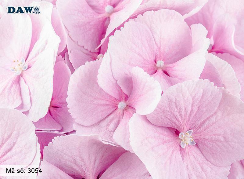 3054 Tranh dán tường Hàn Quốc | Tranh dán tường hoa lá 3054