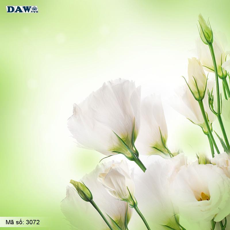 3072 Tranh dán tường Hàn Quốc | Tranh dán tường hoa lá 3072