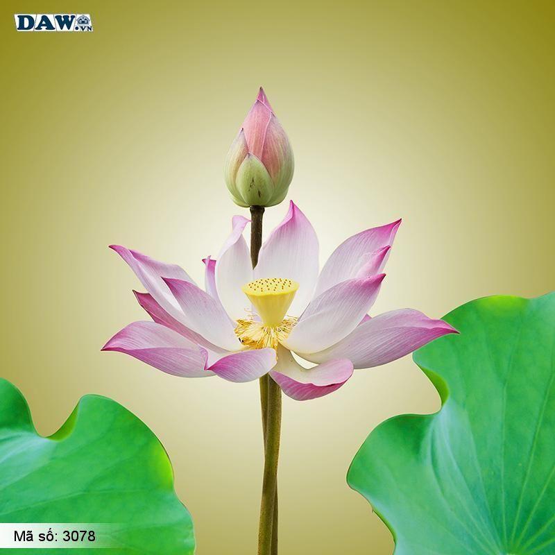 3078 Tranh dán tường Hàn Quốc | Tranh dán tường hoa lá 3078