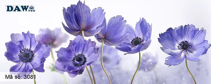 3081 Tranh dán tường Hàn Quốc | Tranh dán tường hoa lá 3081