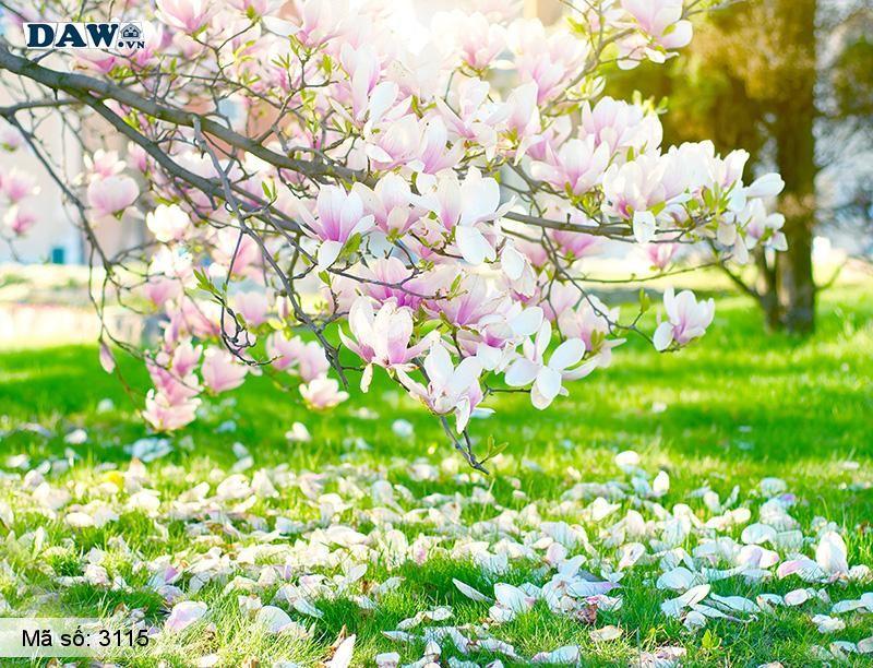 3115 Tranh dán tường Hàn Quốc | Tranh dán tường hoa lá 3115