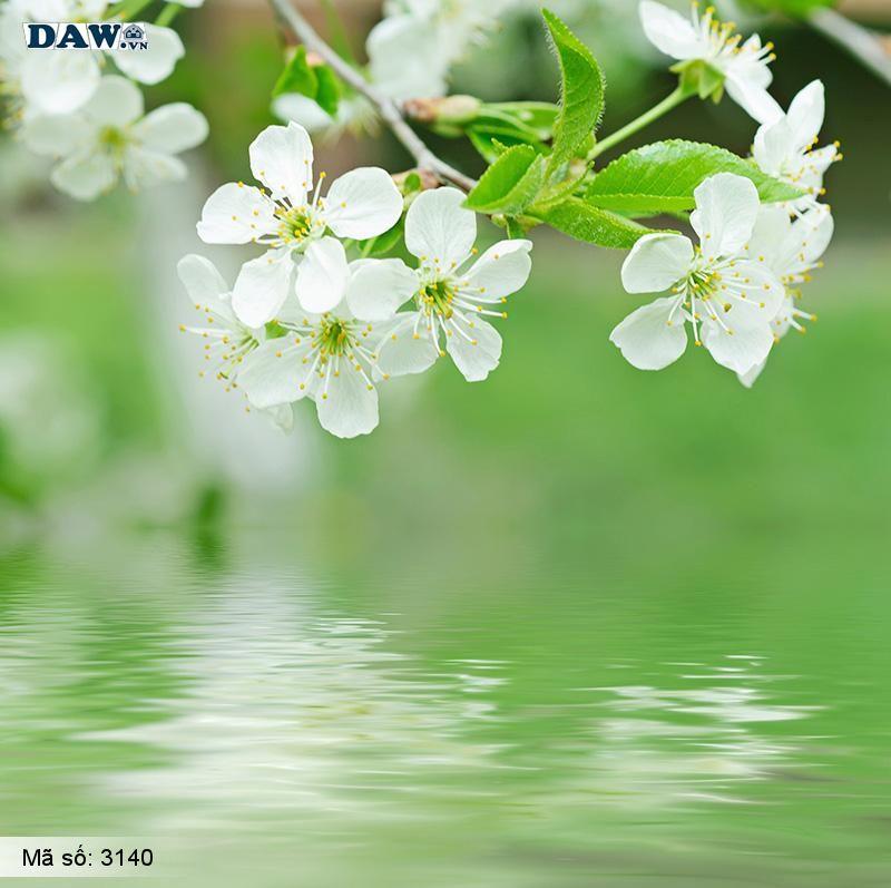 3140 Tranh dán tường Hàn Quốc | Tranh dán tường hoa lá 3140