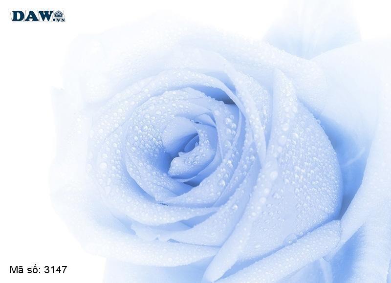 3147 Tranh dán tường Hàn Quốc | Tranh dán tường hoa lá 3147
