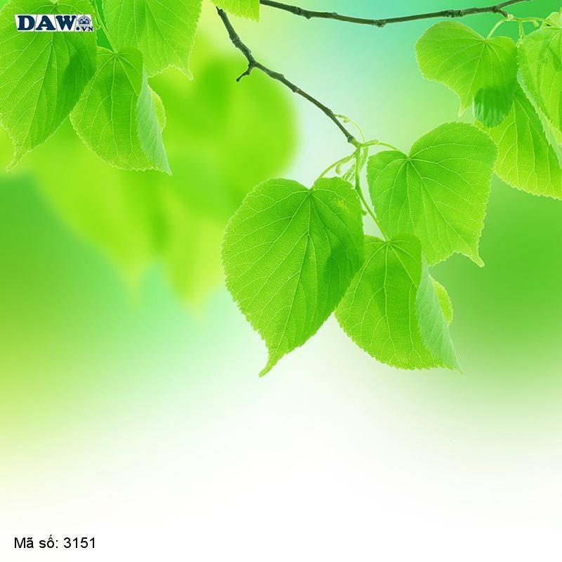 3151 Tranh dán tường Hàn Quốc | Tranh dán tường hoa lá 3151
