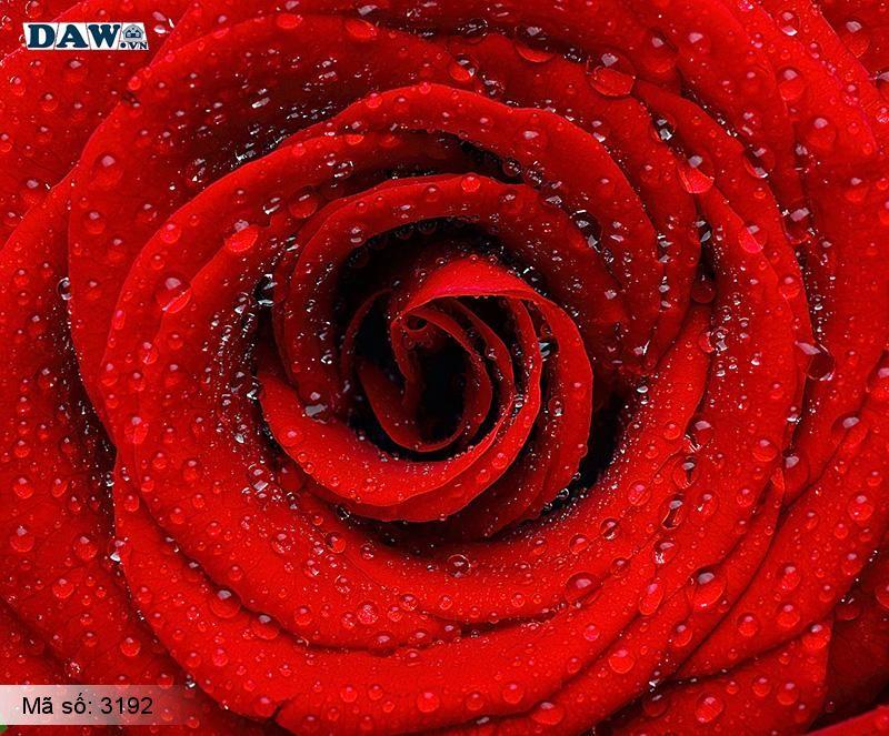 3192 Tranh dán tường Hàn Quốc | Tranh dán tường hoa lá 3192