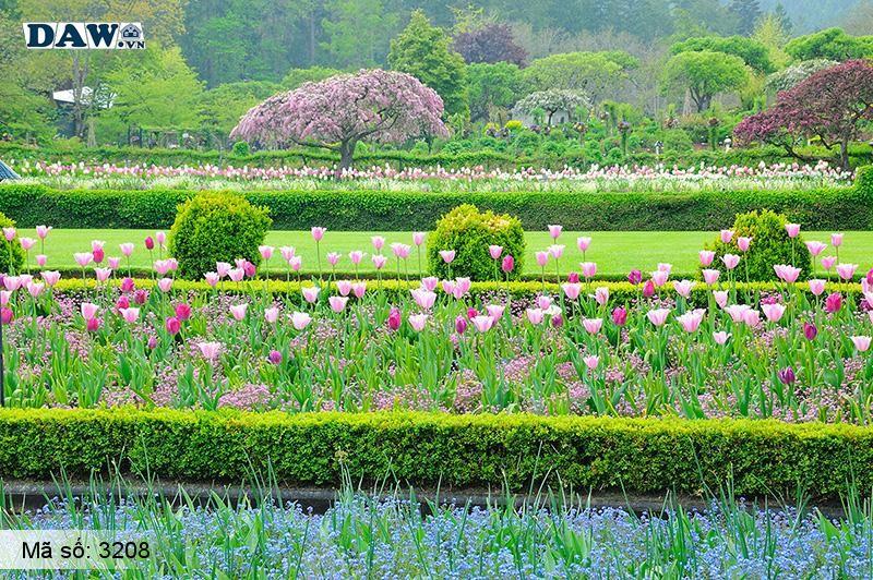 3208 Tranh dán tường Hàn Quốc | Tranh dán tường hoa lá 3208