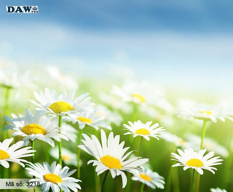 3218 Tranh dán tường Hàn Quốc | Tranh dán tường hoa lá3218