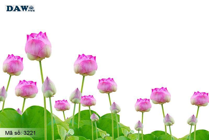 3221 Tranh dán tường Hàn Quốc | Tranh dán tường hoa lá 3221