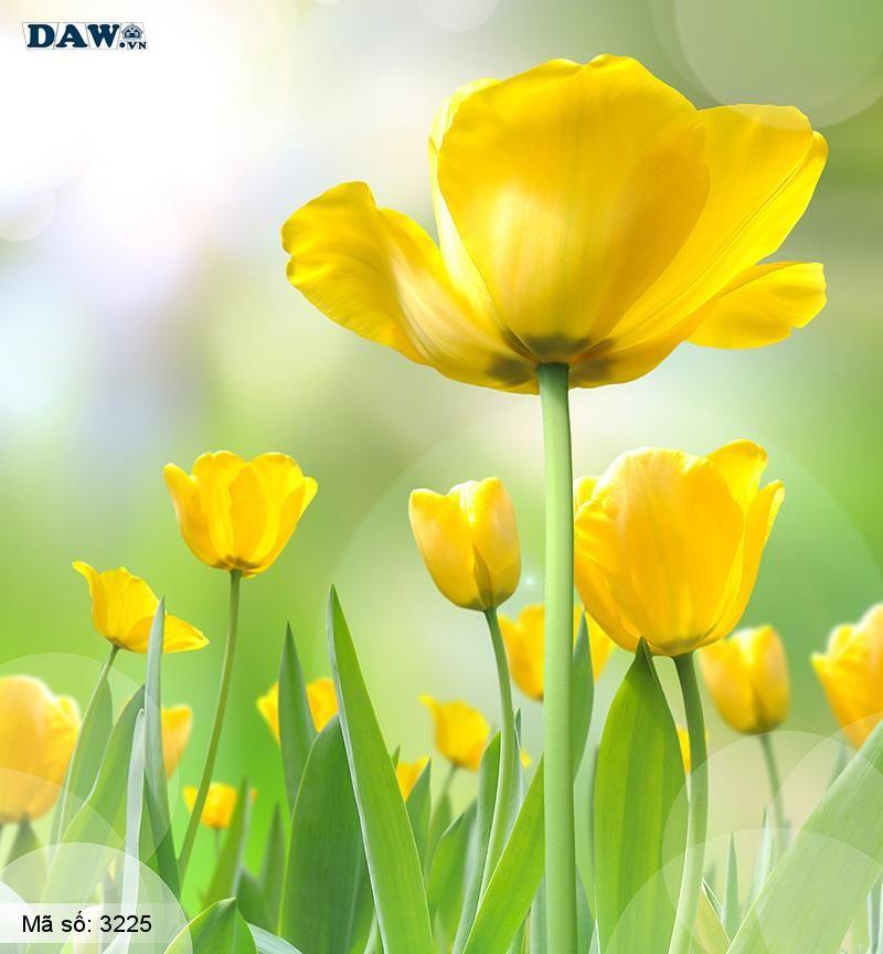 3225 Tranh dán tường Hàn Quốc | Tranh dán tường hoa lá 3225