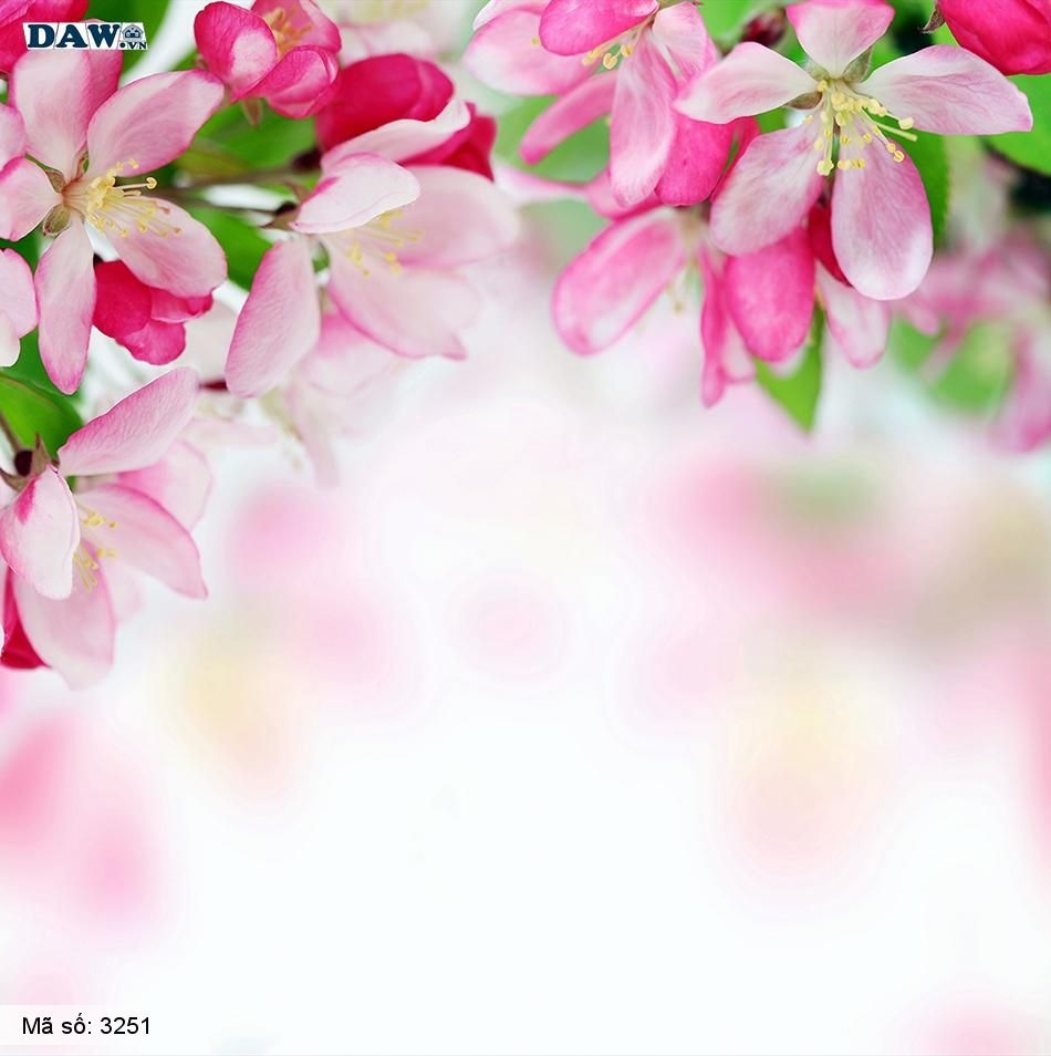 3251 Tranh dán tường Hàn Quốc | Tranh dán tường hoa lá 3251