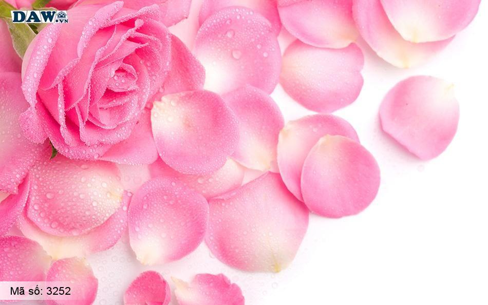 3252 Tranh dán tường Hàn Quốc | Tranh dán tường hoa lá 3252