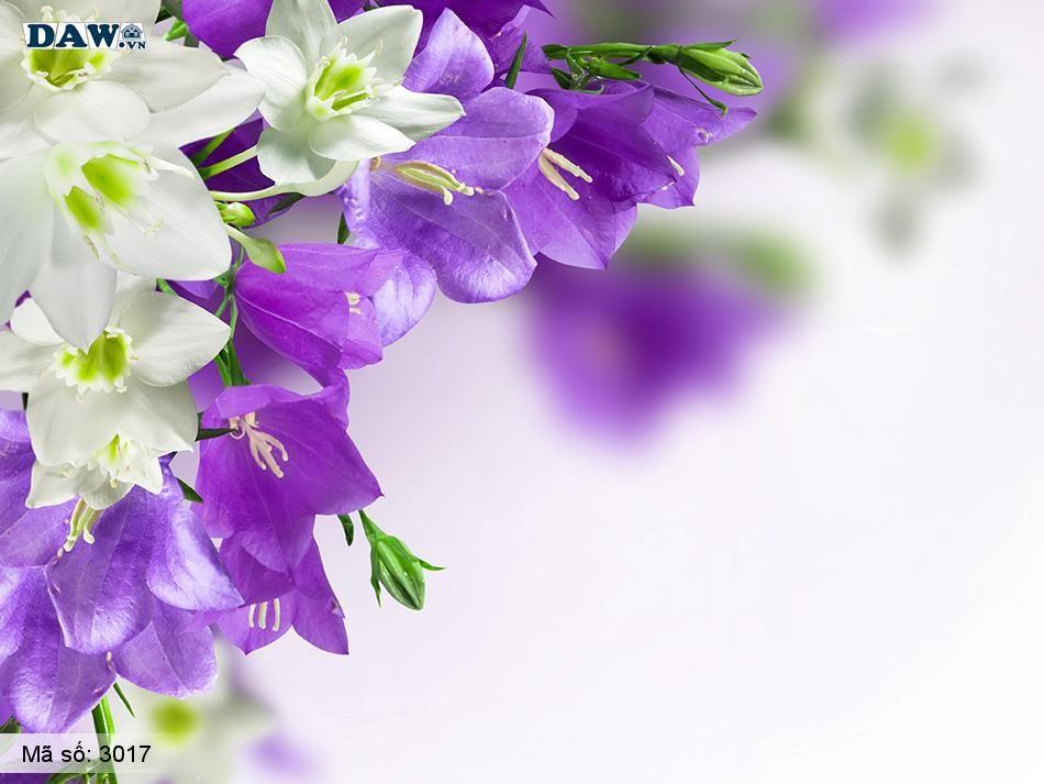 3017 Tranh dán tường Hàn Quốc | Tranh dán tường hoa lá 3017