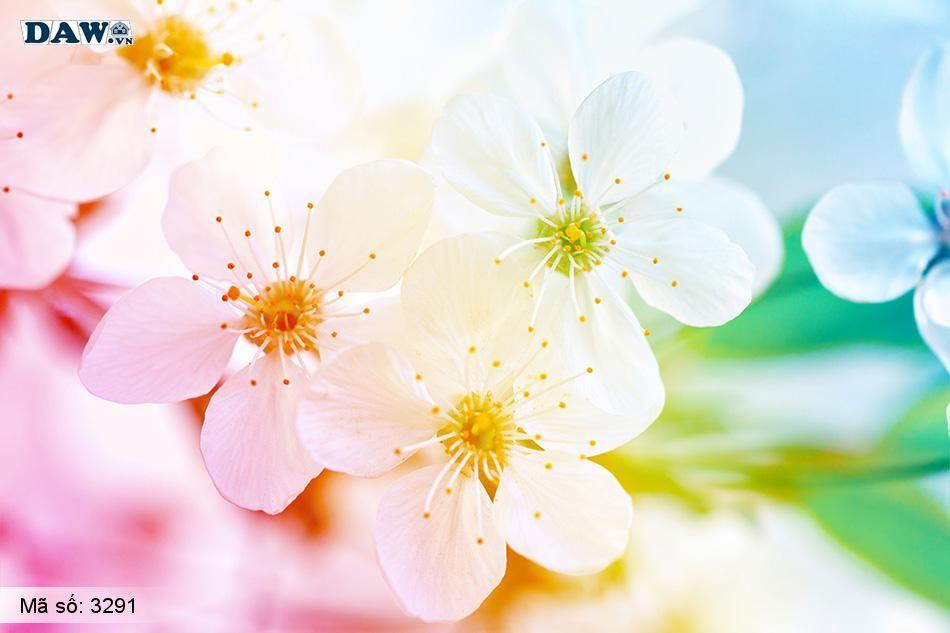 3291 Tranh dán tường Hàn Quốc | Tranh dán tường hoa lá 3291