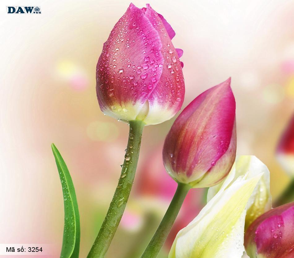 3254 Tranh dán tường Hàn Quốc | Tranh dán tường hoa lá 3254
