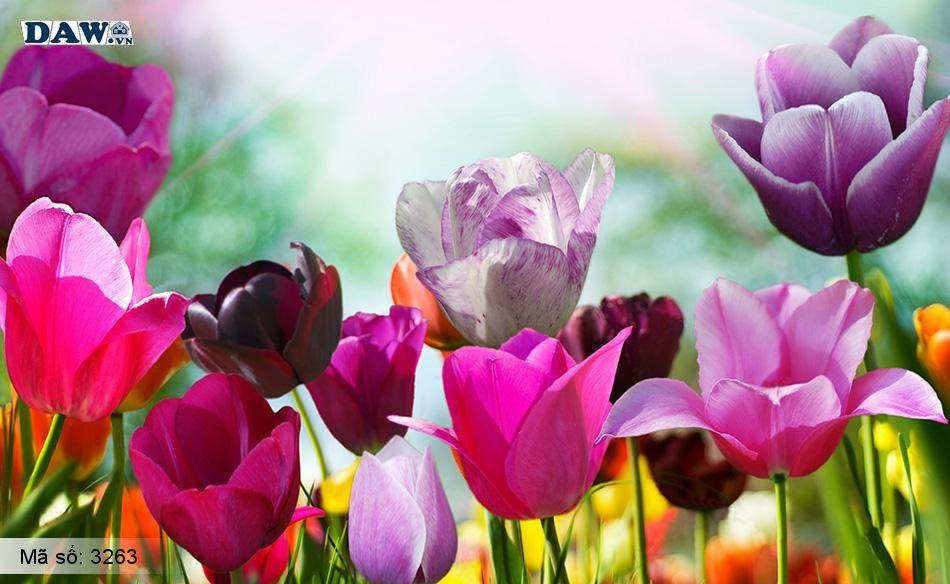 3263 Tranh dán tường Hàn Quốc | Tranh dán tường hoa lá 3263