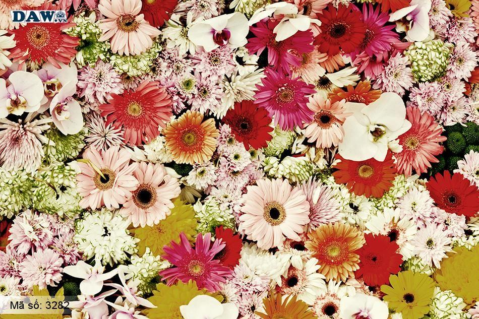 3282 Tranh dán tường Hàn Quốc | Tranh dán tường hoa lá 3282