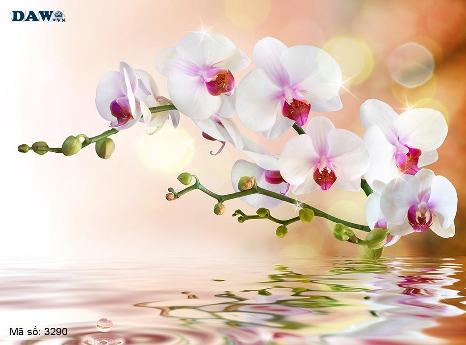 3290 Tranh dán tường Hàn Quốc | Tranh dán tường hoa lá 3290