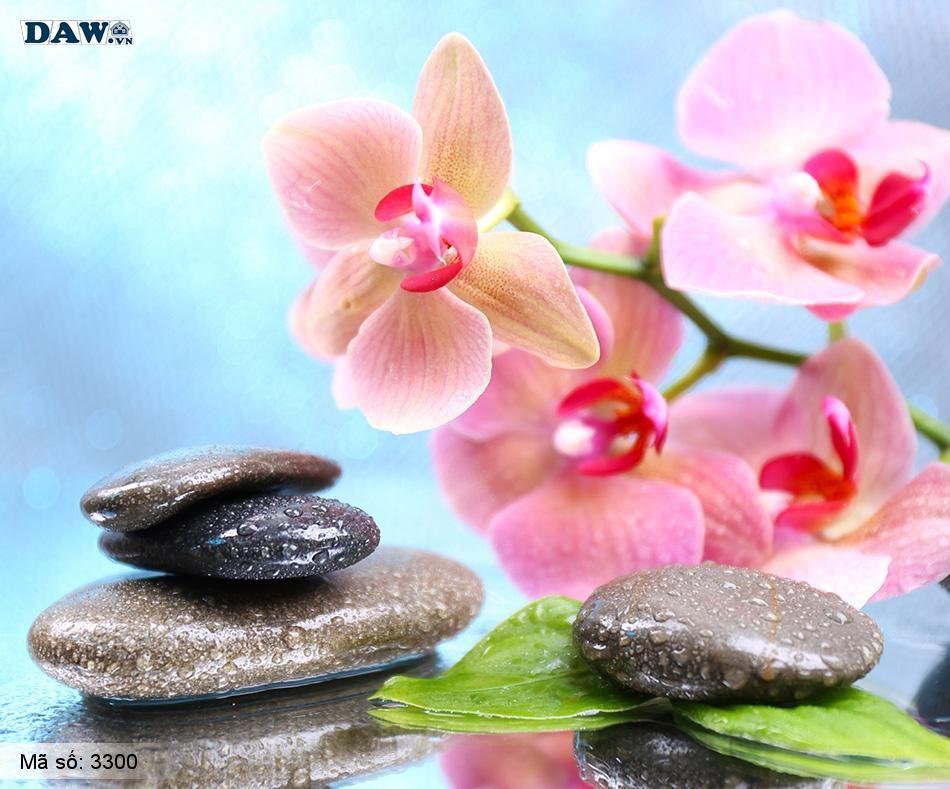 3300 Tranh dán tường Hàn Quốc | Tranh dán tường hoa lá 3300