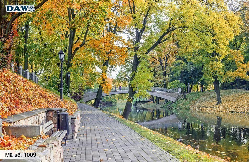 1009 Tranh dán tường Hàn Quốc | Tranh dán tường Thiên Nhiên - Phong Cảnh 1009