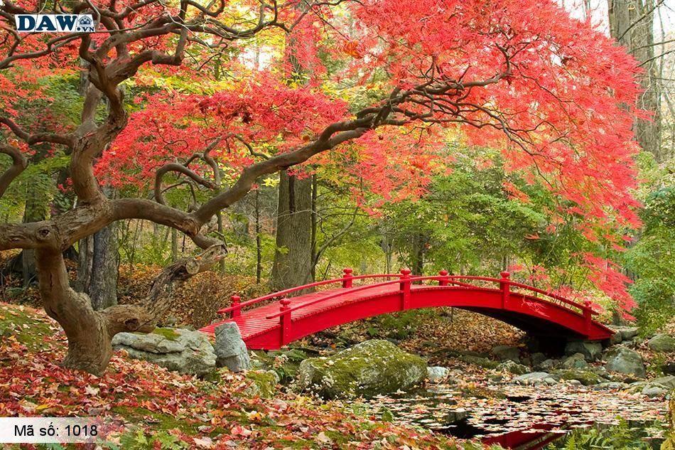 1018 Tranh dán tường Hàn Quốc | Tranh dán tường Thiên Nhiên - Phong Cảnh 1018