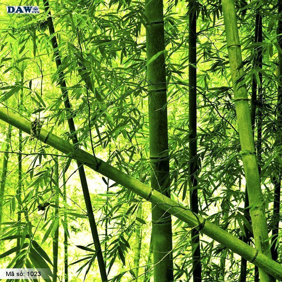 1023 Tranh dán tường Hàn Quốc | Tranh dán tường Thiên Nhiên - Phong Cảnh 1023