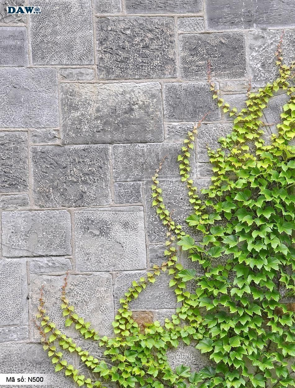 N500 Tranh dán tường Hàn Quốc | Tranh dán tường Dây leo tường N500