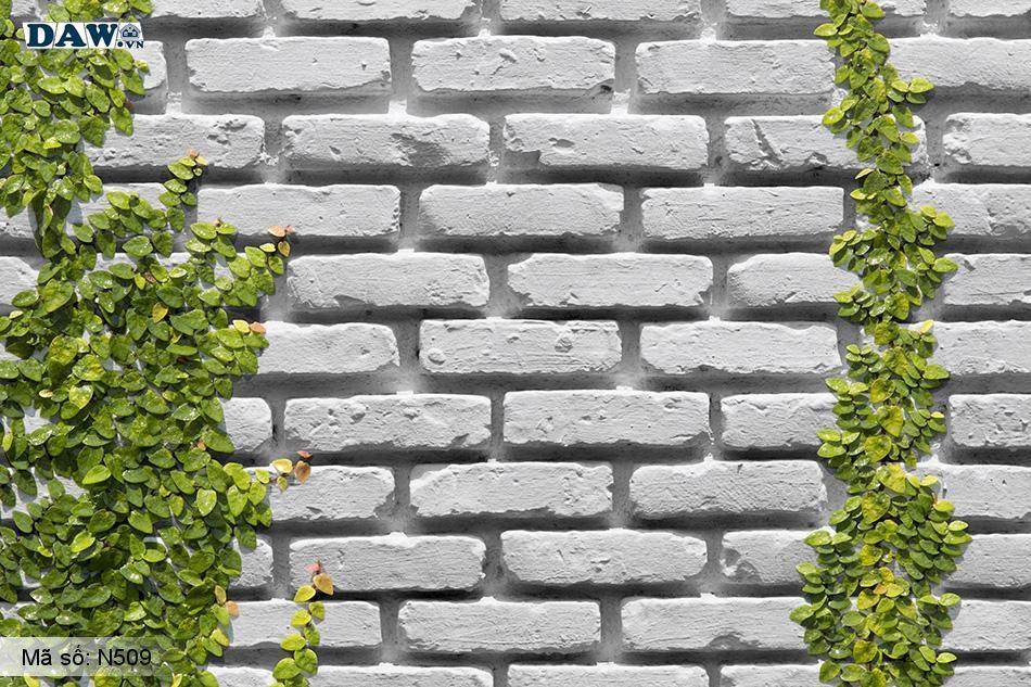 N509 Tranh dán tường Hàn Quốc | Tranh dán tường Dây leo tường N509