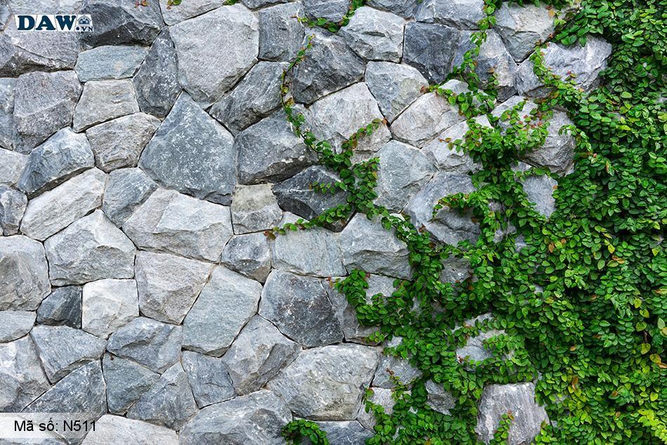 N511 Tranh dán tường Hàn Quốc | Tranh dán tường Dây leo tường N511