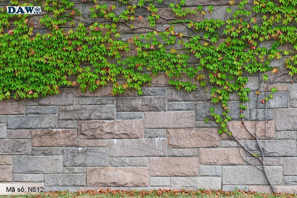 N512 Tranh dán tường Hàn Quốc | Tranh dán tường Dây leo tường N512