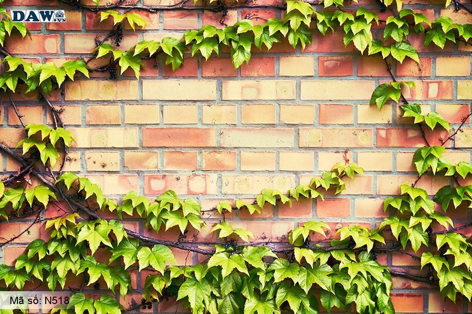 N518 Tranh dán tường Hàn Quốc | Tranh dán tường Dây leo tường N518