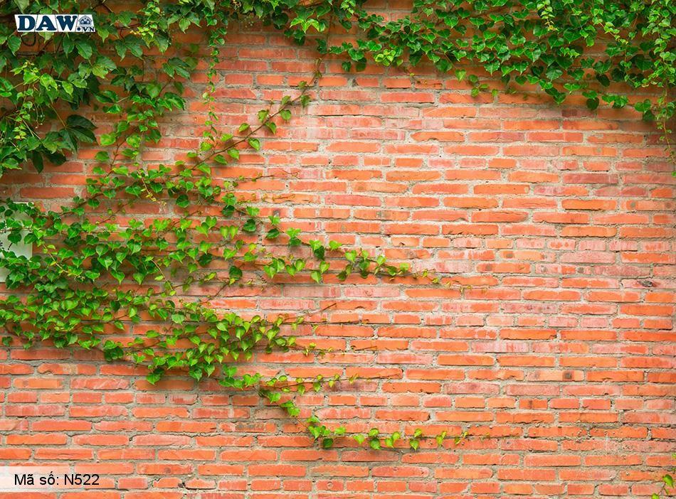 N522 Tranh dán tường Hàn Quốc | Tranh dán tường Dây leo tường N522
