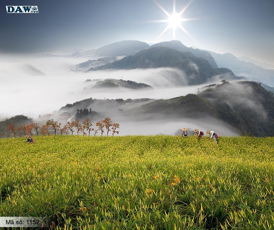 1152 Tranh dán tường Hàn Quốc | Tranh dán tường Thiên Nhiên - Phong Cảnh 1152