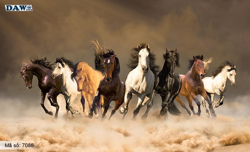 Tranh dán tường mã đáo thành công đẹp nhất, đàn ngựa chạy trên núi